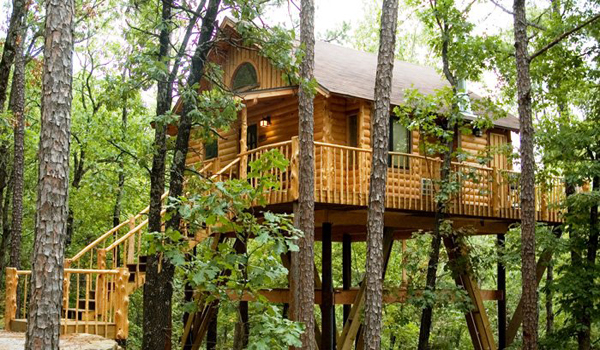 Stay at these Treehouses