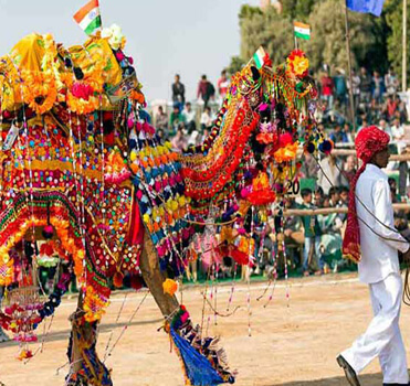 Ajmer Pushkar Sightseeing Tour